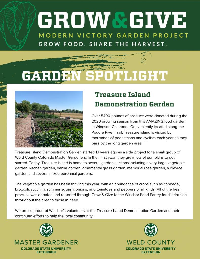Grow & Give Community Garden Spotlight - Treasure Island in Windsor