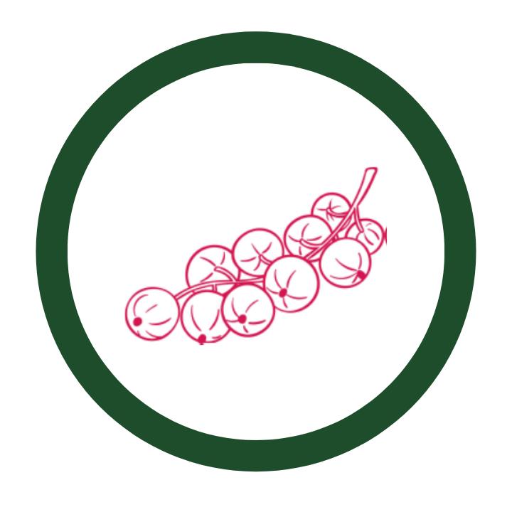 Ribes species thumbnail